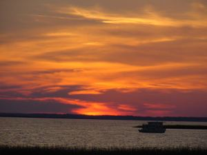 Chincoteague 012